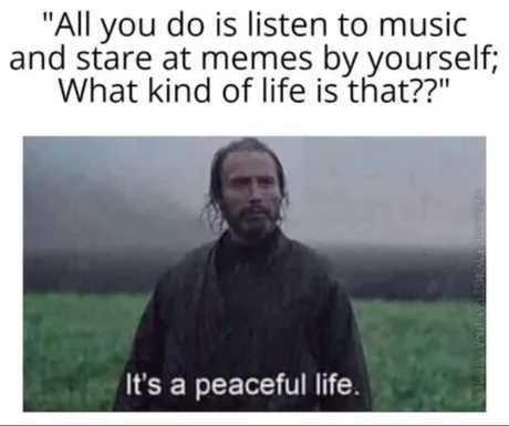 Livin peaceful life - meme