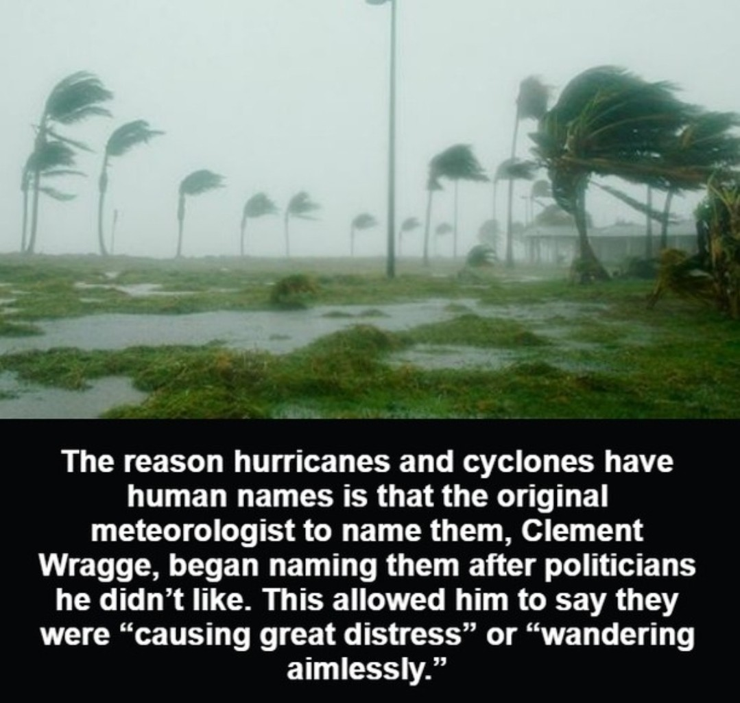 Hurricanes are probably less destructive - meme