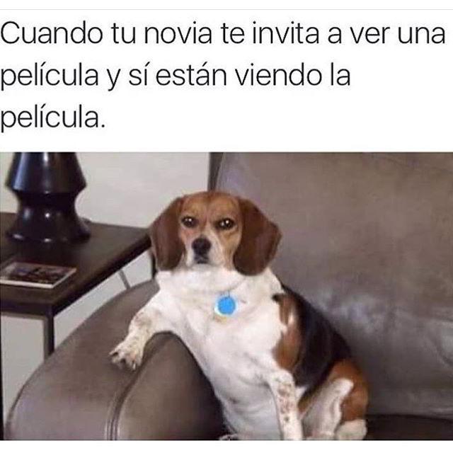 #Putabida - meme