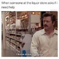 I'm not an alcoholic I swear