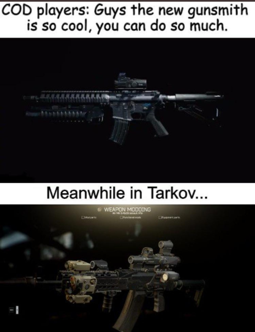 Tarkov gun modding is crazy! - meme