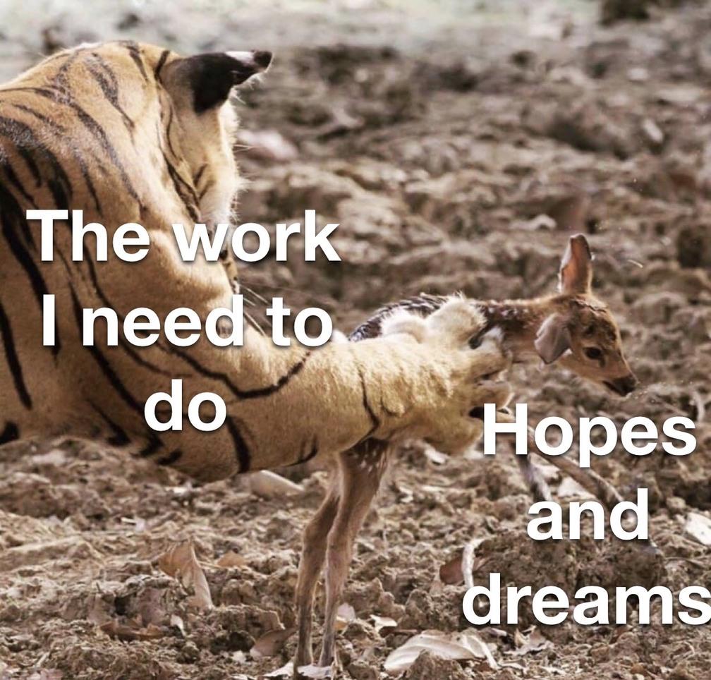 when you don't wanna do the work - meme
