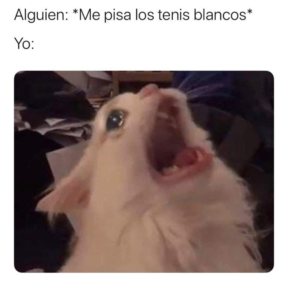 Ahh! - meme