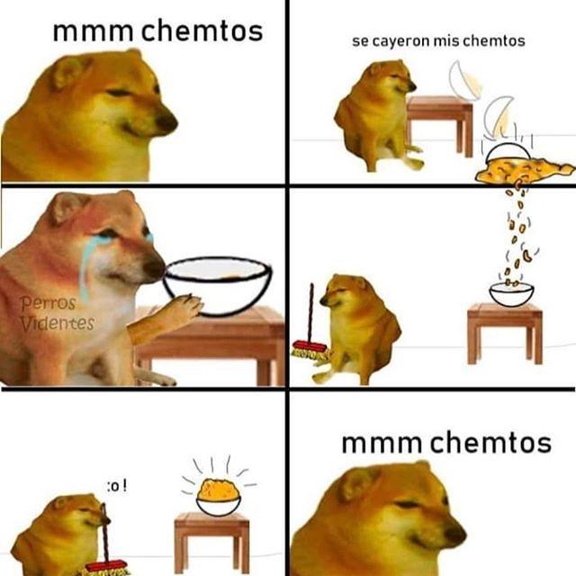 cheem - meme