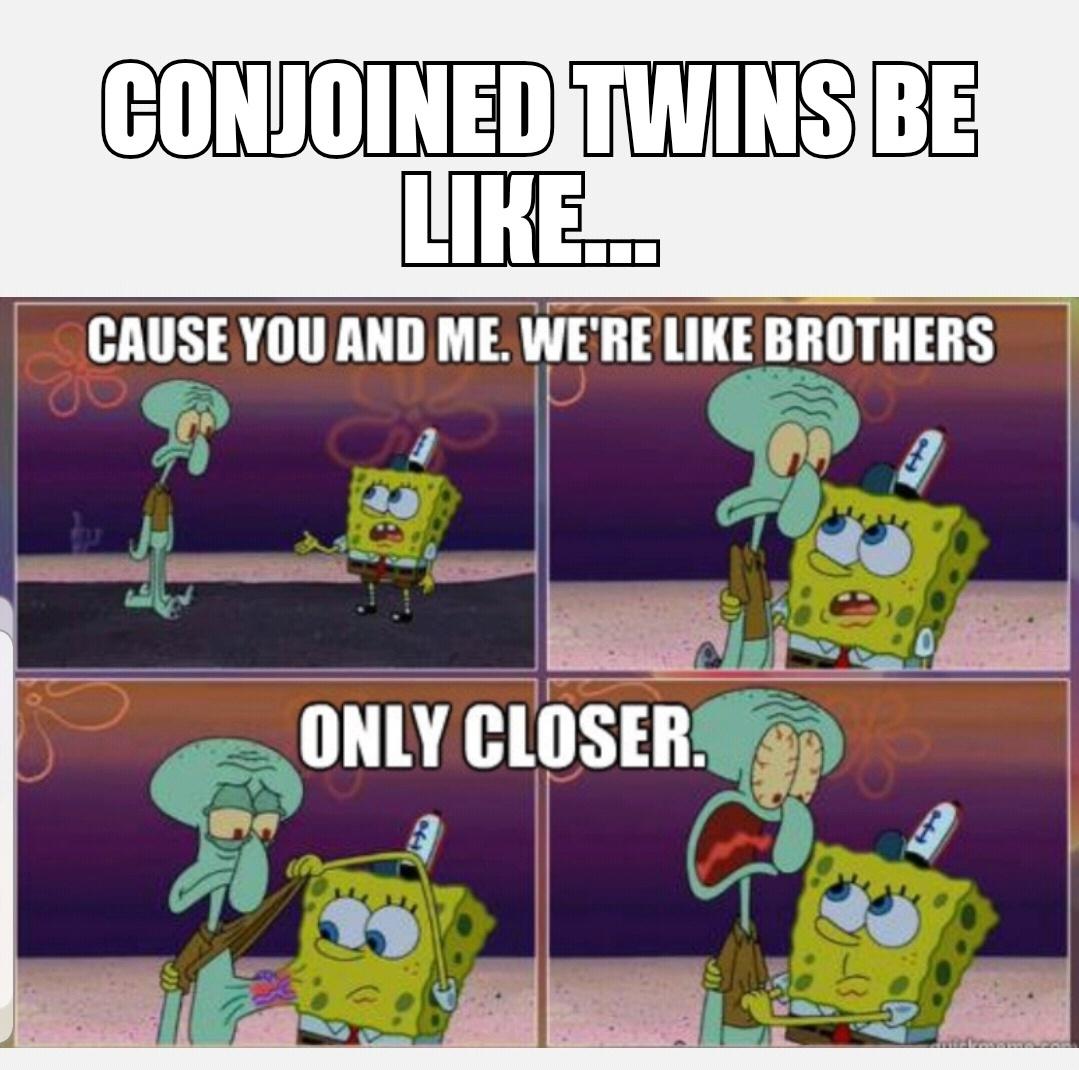 SpongeBob memes are the best memes
