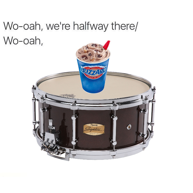 Blizzard on a Snare! - meme