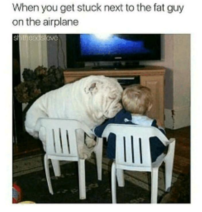 Rational fear of flying - meme