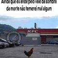 A galinha mais braba do mundo
