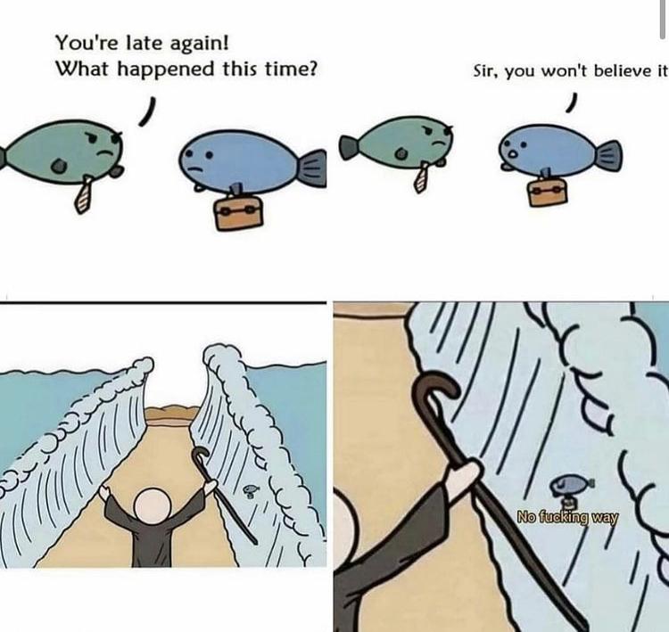 Imagine being that fish - meme
