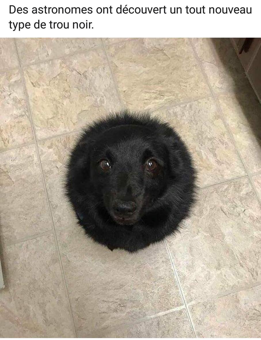 Nouveau trou noir xD - meme