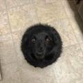 Nouveau trou noir xD
