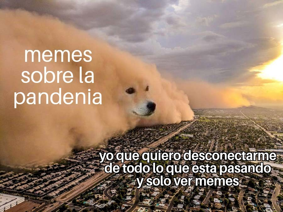 Dogdemia - meme