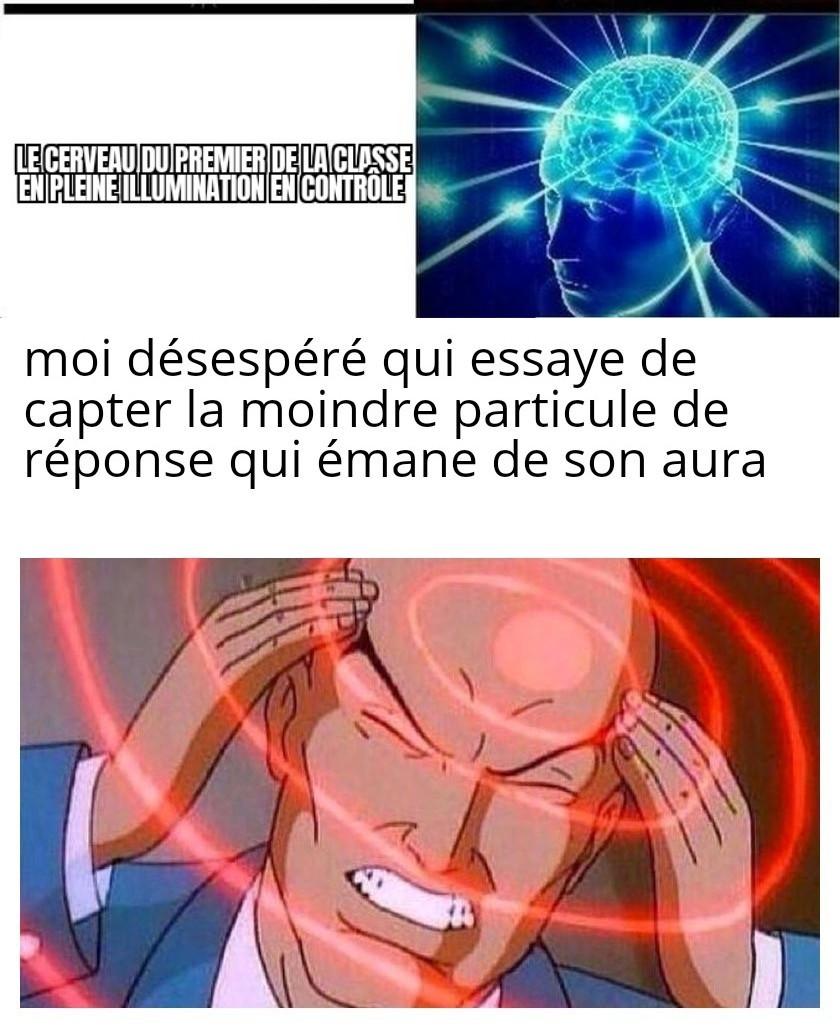 Triste vie - meme