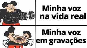 voz - meme