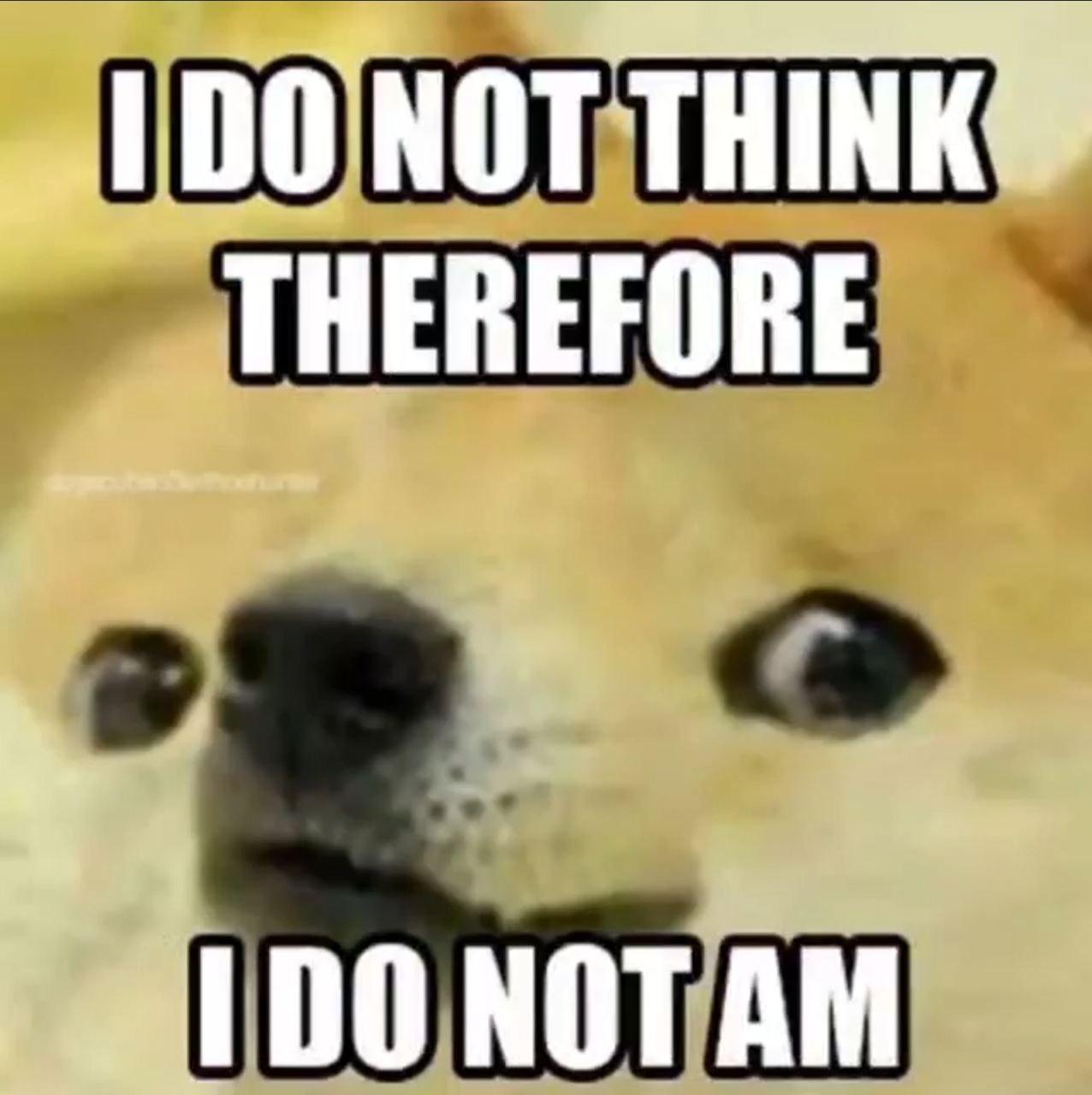 I do not am - meme