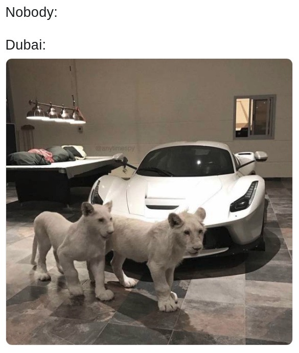 How Dubai administrates all the oil money - meme