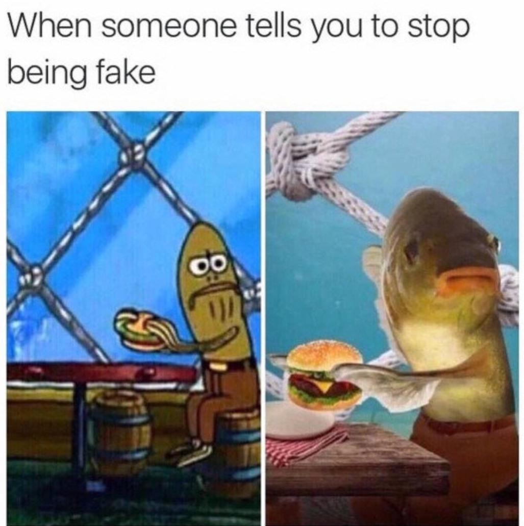 Fake - meme