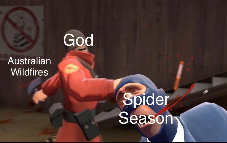 Rip Australia - meme