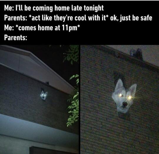 1 sec late - meme