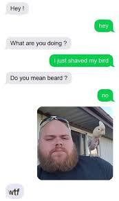 "nightmarish:,""i shaved my bird"" - meme"