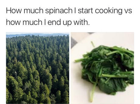 Cooking spinach - meme