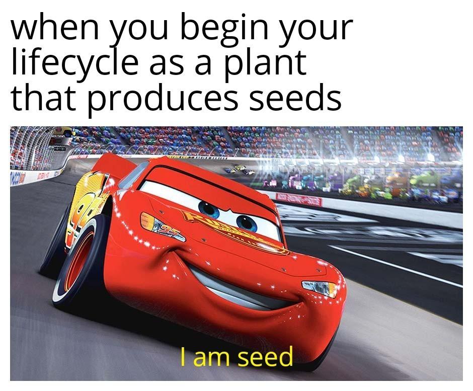 Seed - meme