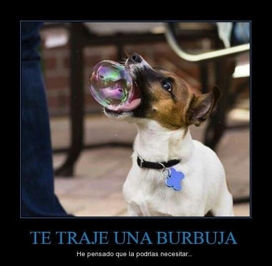 Burbujas - meme