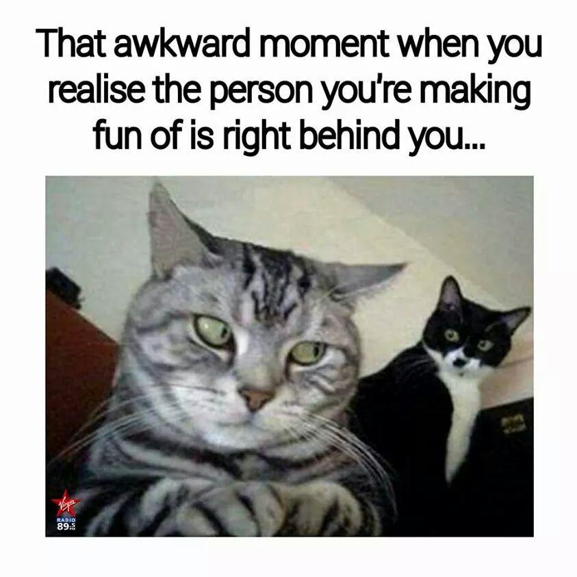 oops... - meme