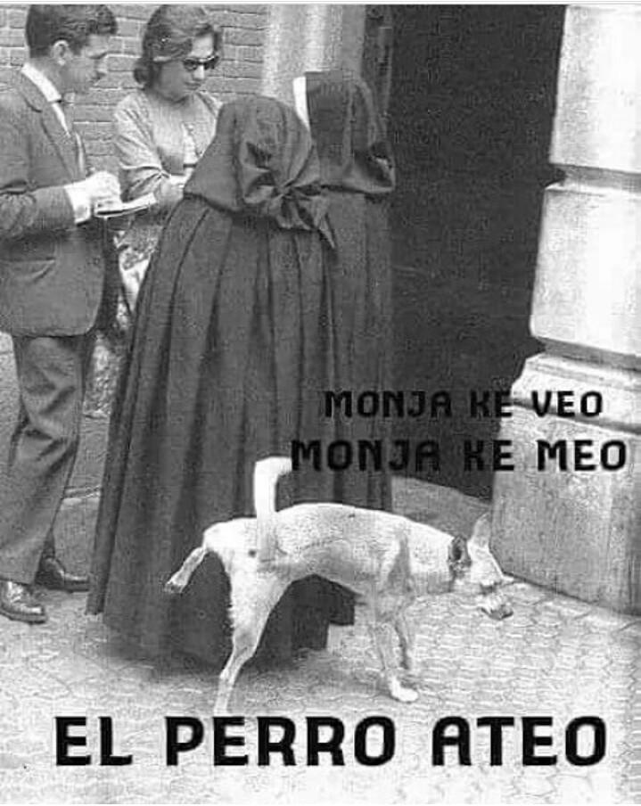 Perro ateo - meme