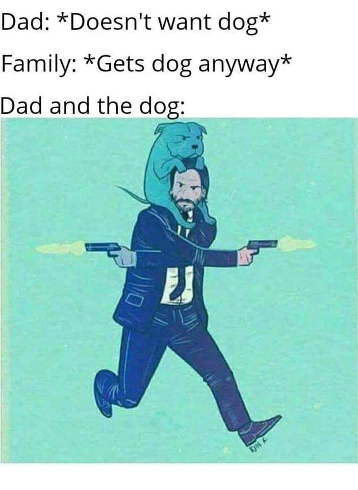 John Wick 3 had too many repetitive dog scenes and not enough knife throwing - meme