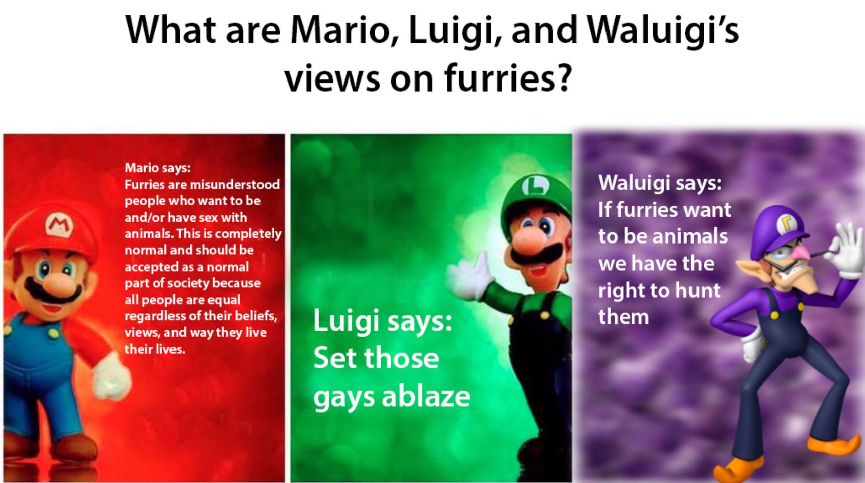 Ignore the Luigi and Waluigi - meme