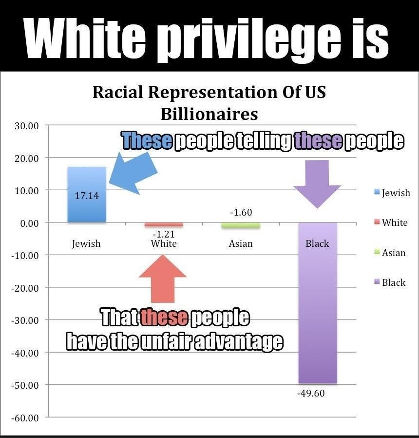 The real priviledge - meme