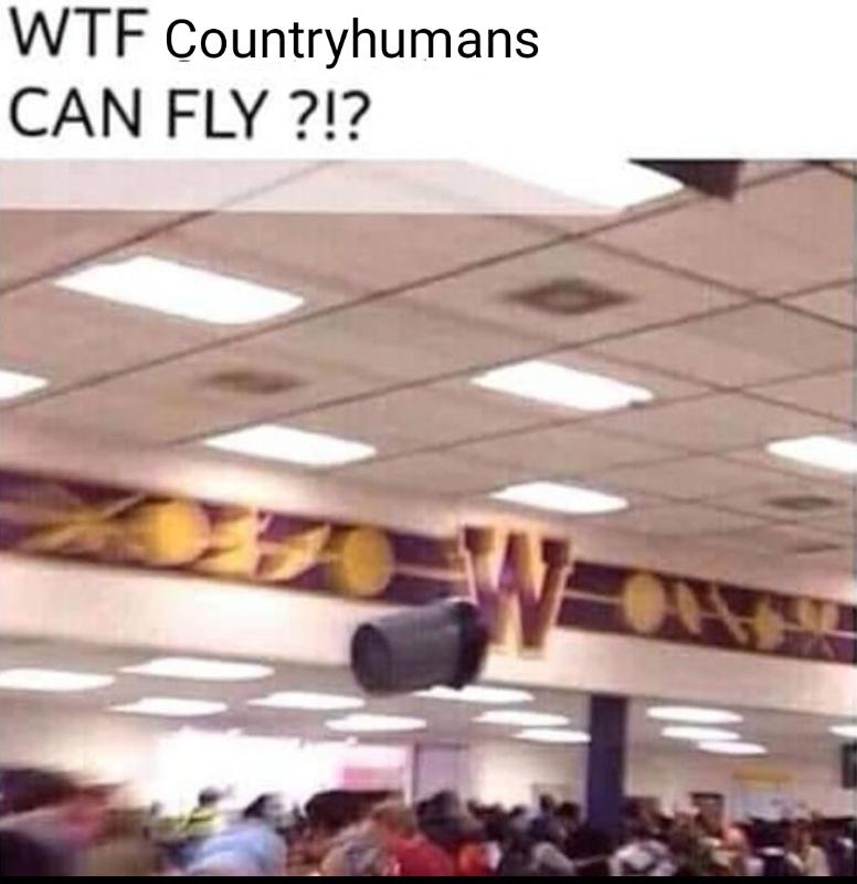 Countryhumans - meme