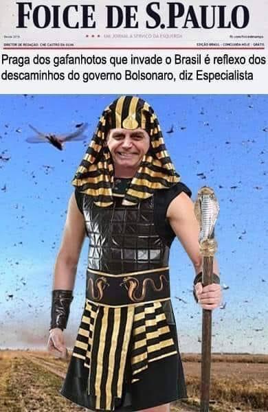 Biroliro faraó - meme