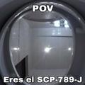 Contexto: el SCP-789-J es una cara dentro de un excusado. Fin del contexto