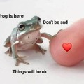 Frog is here for you, I am too.