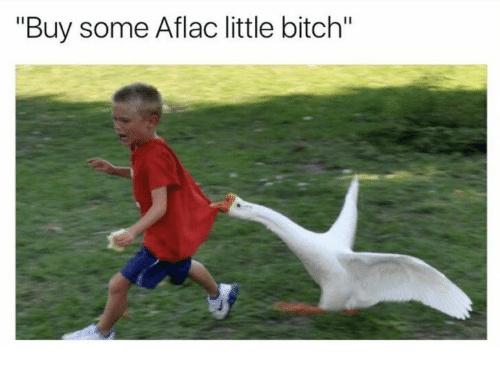 Aflac - meme