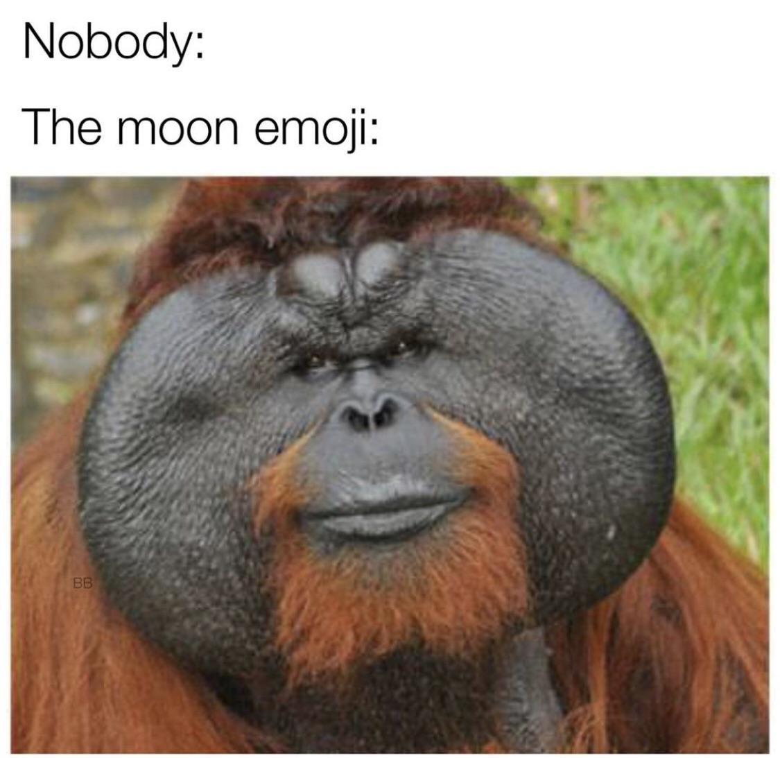 Moon emoji  - meme