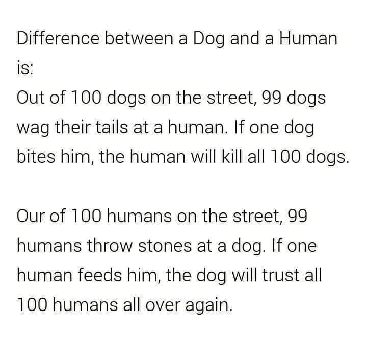 Difference between a Dog and a Human! - meme