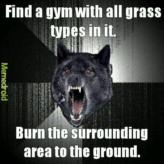 Team mystic rules! - meme