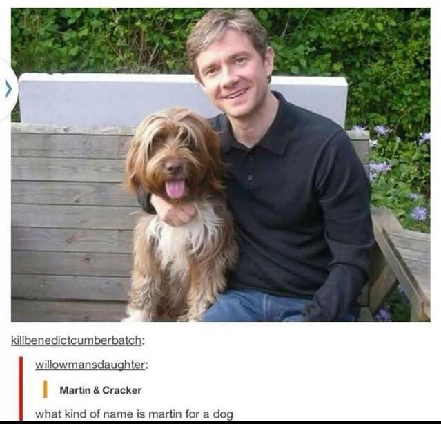 "I don't think the dog is names ""Martin"" - meme"