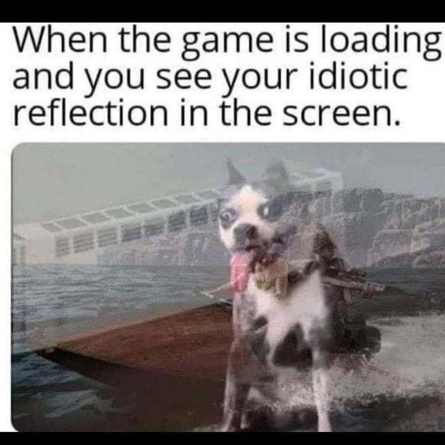 When the game is loading and you see your idiotic reflection in the screen - meme