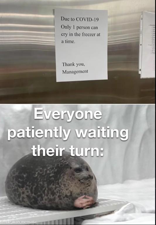 *waits* - meme