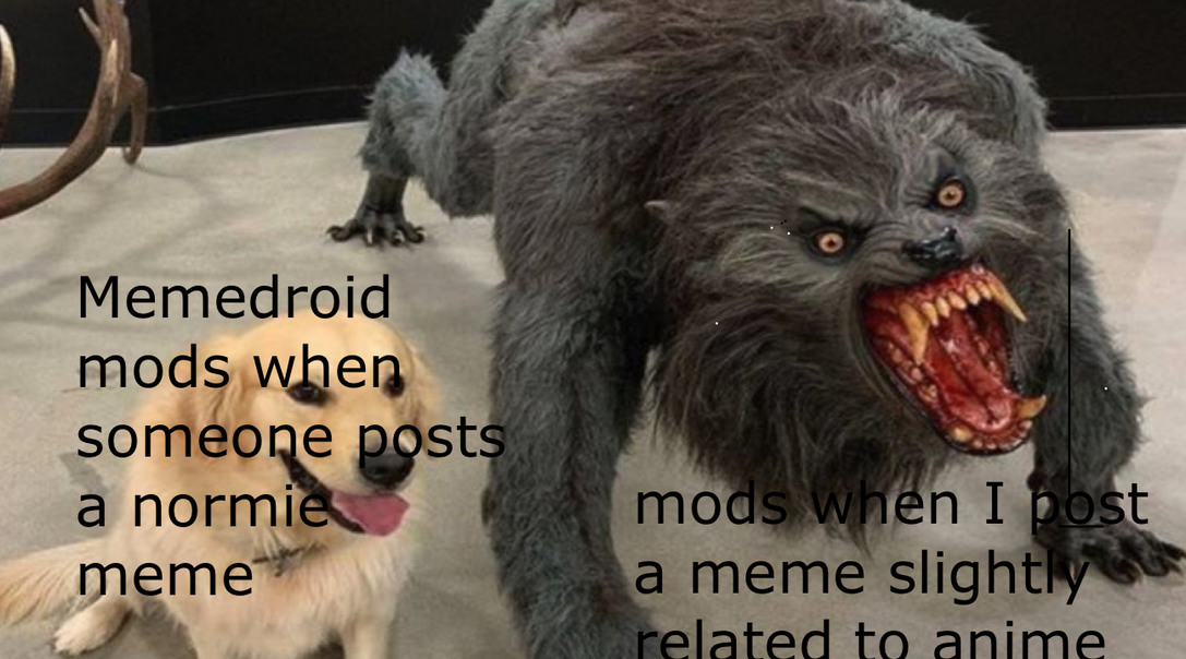Mods are 40 year old moms - meme