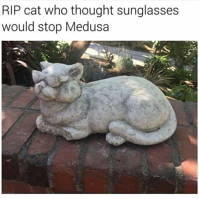 Sunglasses can't stop Medusa - meme