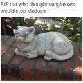 Sunglasses can't stop Medusa