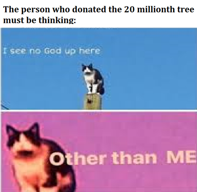 I see no God up here other than me - meme