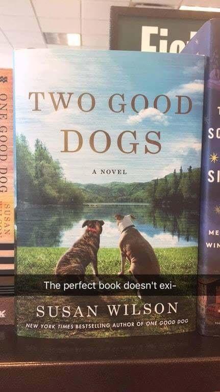 best book ever - meme