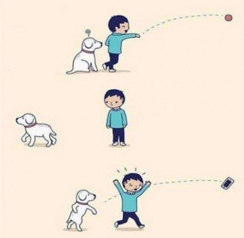 Doggo.. - meme
