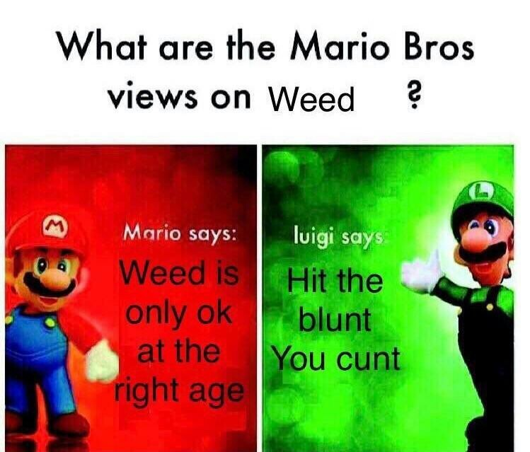 Smoke Weed Everyday - meme